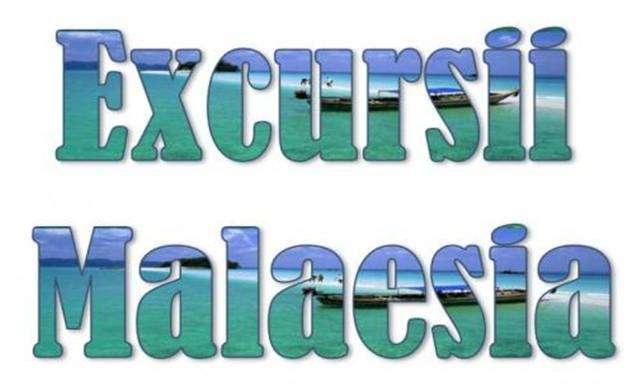 Atractii turistice si excursii optionale Malaesia
