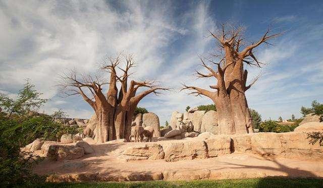 Atractii Turistice si Excursii optionale Valencia