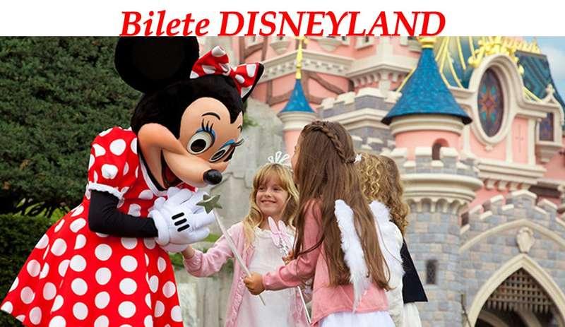 Bilete de intrare Disneyland 1 zi 2 parcuri
