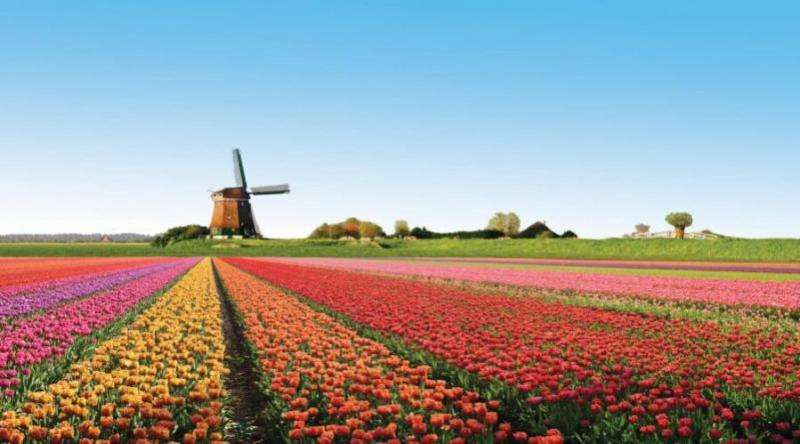 City break Amsterdam mai 2018 bilet de avion si hotel inclus