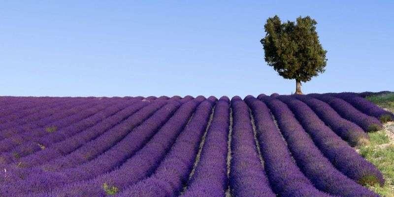 City break Marsilia vacanta 1 mai 2018 bilet de avion si hotel inclus