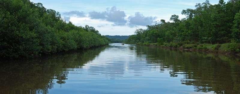 Croaziera 2017 Transcanal/Canalul Panama Vas: Carnival Freedom Plecare din: Galveston