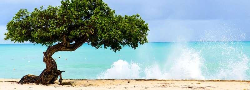 Croaziera 2018 Caraibele de Est Vas: Zenith plecare Barbados