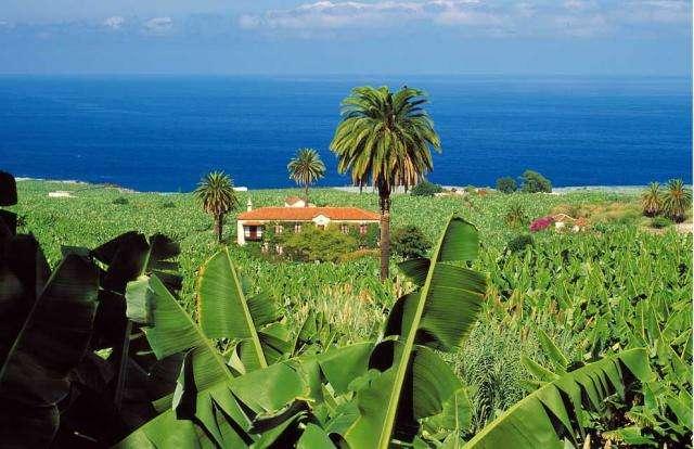 Atractii turistice si excursii optionale Tenerife