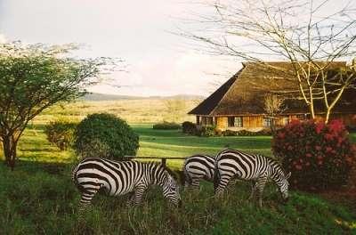 Circuit 2018 Safari in Kenya Sejur in Zanzibar