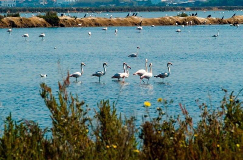 Sejur  Algarve aprilie bilet de avion si hotel inclus