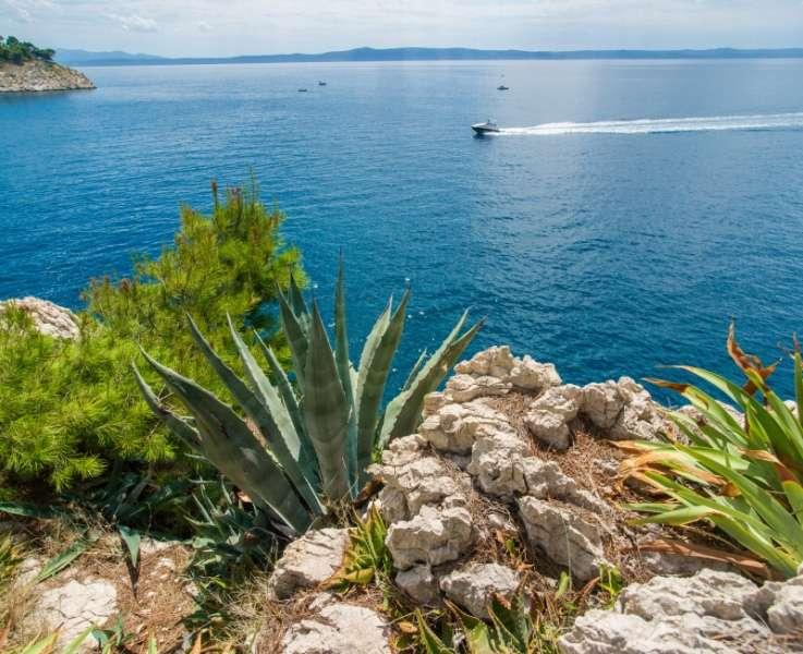 Sejur avion Croatia 2018 oferta Bluesun Neptun (Tucepi) 3*