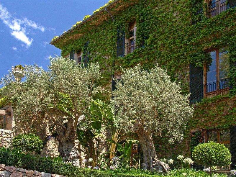 Sejur avion Mallorca Spania 2017 oferta Hotel Bahia Principe Coral Playa 4*