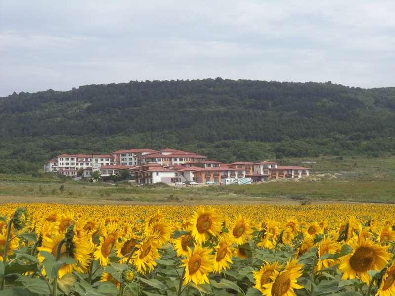 Sejur Bulgaria Vara 2017 Nisipurile de aur Hotel PERUNIKA 3*