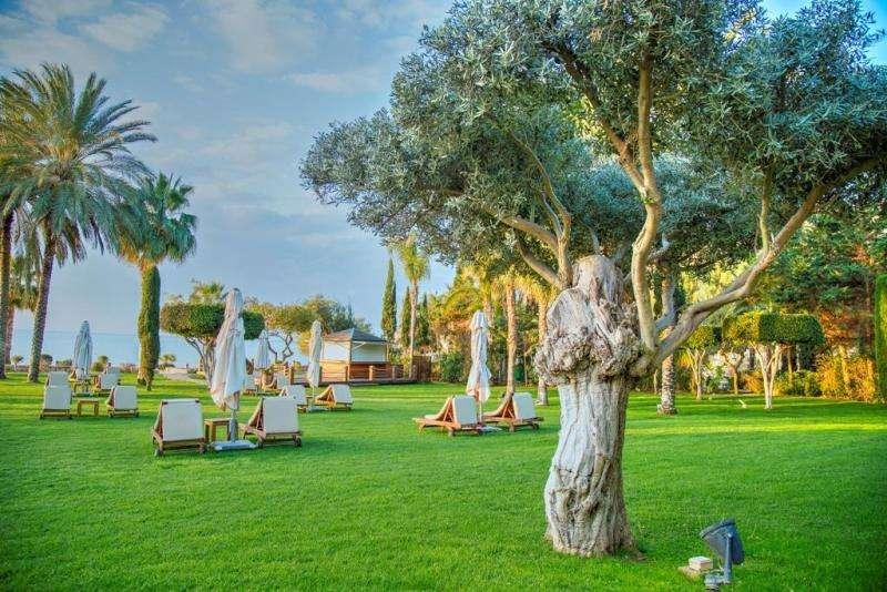 Sejur Cipru Limassol mai bilet de avion si hotel inclus