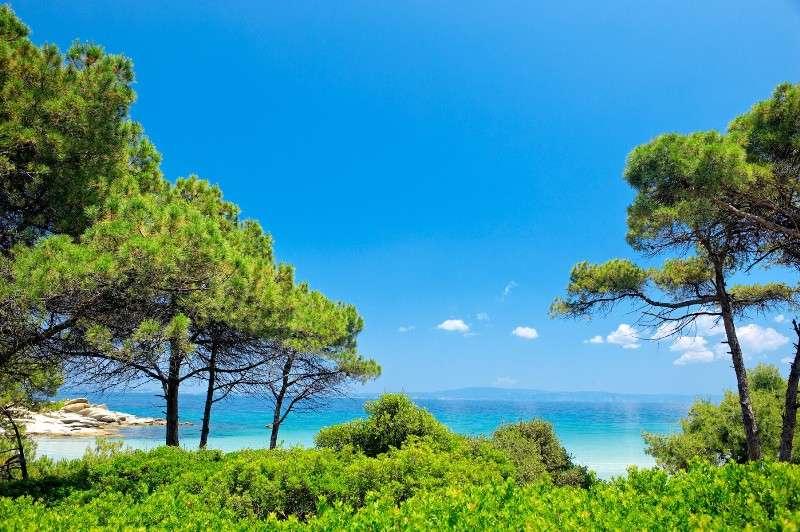 Sejur Halkidiki Grecia autocar Hotel MEDUSA 3*