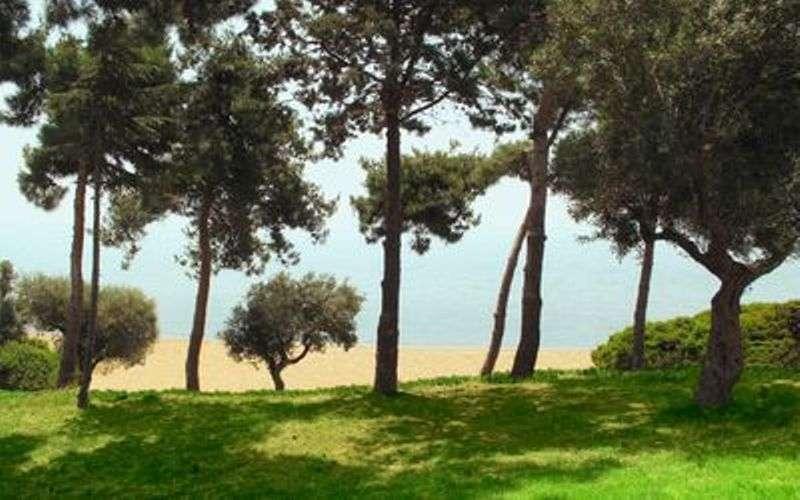 Sejur Halkidiki Grecia individual Hotel Across Potidea Golden Beach 2*