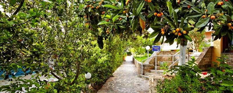 Sejur Insula Evia Grecia individual Hotel Philoxenia Hotel (Lefkandi) 3*