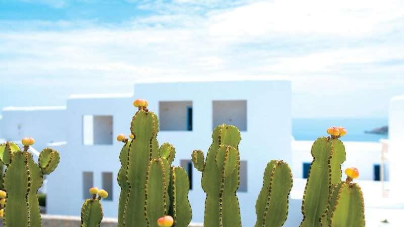 Sejur Mykonos Grecia avion 2017 oferta Hotel Giannoulaki Village 4*