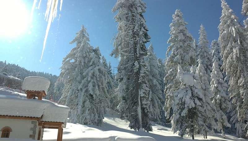Sejur ski Bulgaria individual octombrie