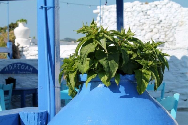 Sejur Skiathos si Skopelos Grecia individual iunie