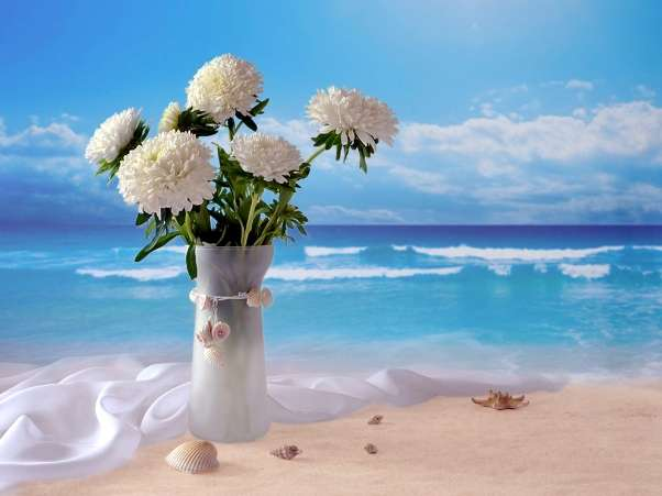 Sejur Bulgaria Snny Beach Vara 2018 HOTEL MPM BLUE PEARL 4*