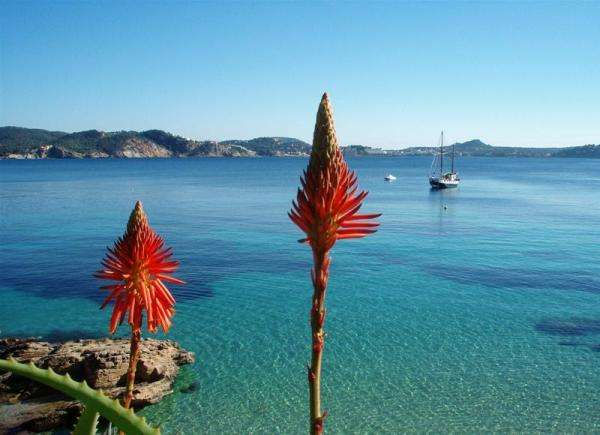 Sejur avion charter Mallorca Spania 2018 oferta Hotel Fashion Nautic 4* demipensiune