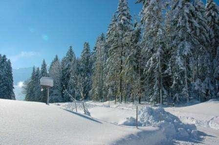 Ski Austria Bad Gastein Pensiunea Maria Theresia 3*+