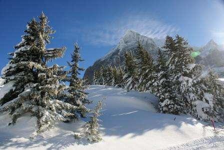 Ski Elvetia Grindelwald decembrie 2018 bilet de avion si hotel inclus