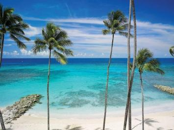 Vacanta exotica Barbados iunie