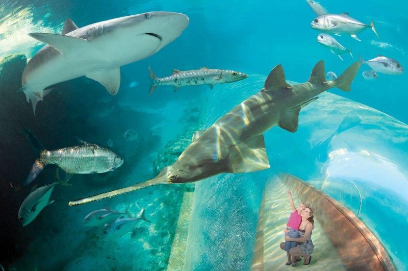 Vacanta exotica Bahamas martie