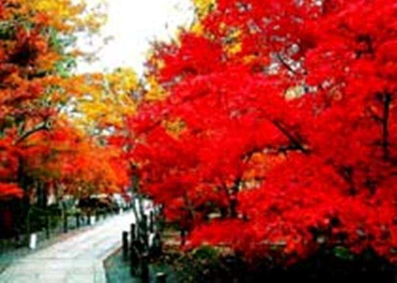Vacanta exotica Beijing octombrie
