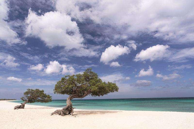 Vacanta exotica Caraibe Aruba aprilie