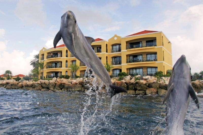 Vacanta exotica Curacao septembrie 2016