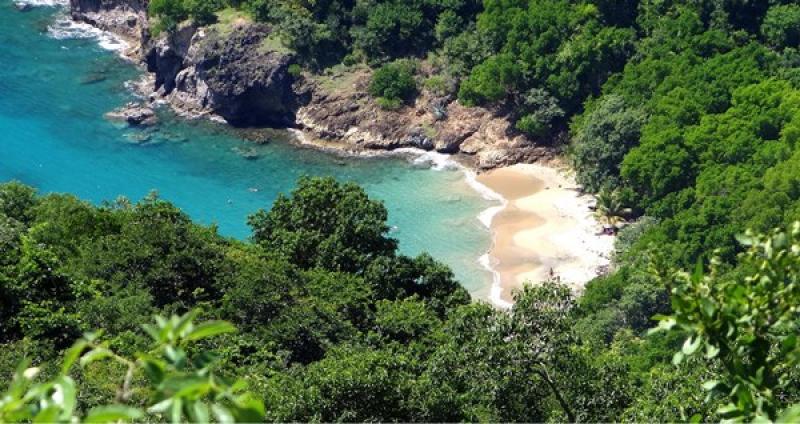Vacanta exotica Guadeloupe martie