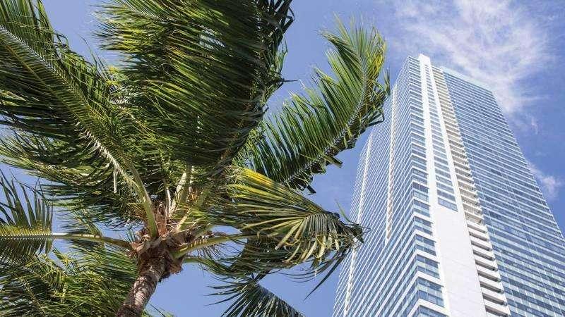 Vacanta exotica Miami octombrie 2017