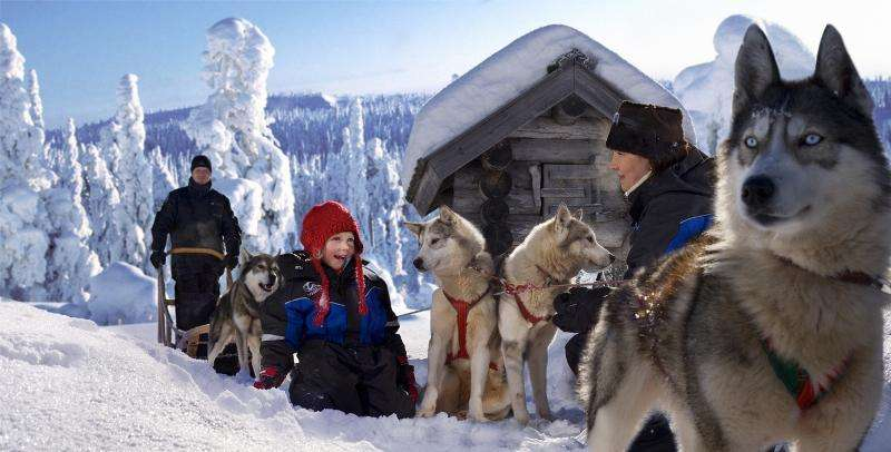 Vacanta in Tara lui Mos Craciun Laponia Finlanda 1 decembrie 2017