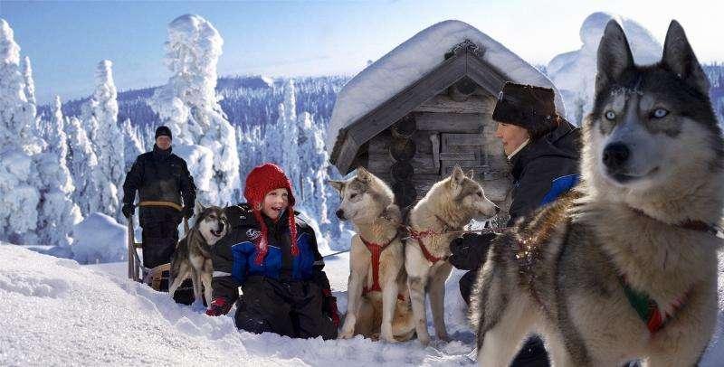 Vacanta in Tara lui Mos Craciun Laponia Finlanda noiembrie 2018 sejur individual