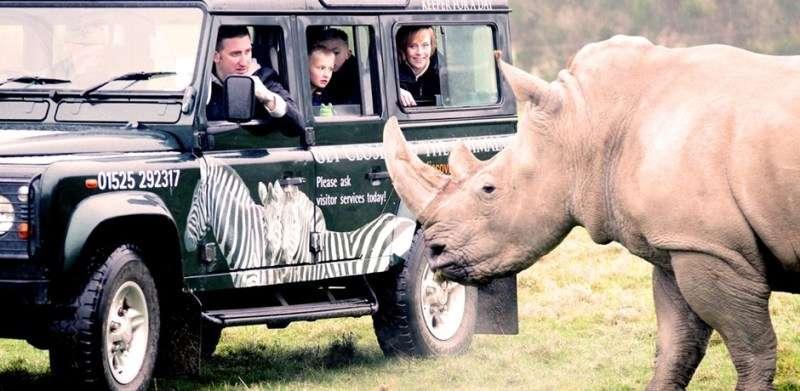 Vacanta Safari Park Viena, Schonbrunner Wildlife Park septembrie 2017