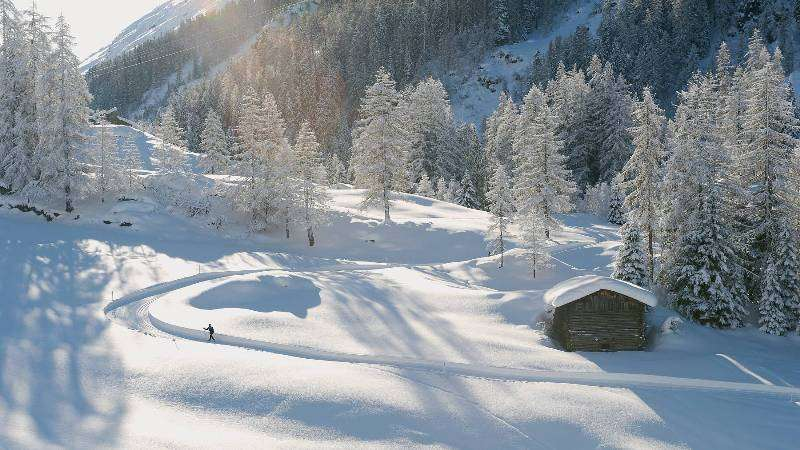 Vacanta Ski Elvetia individual noiembrie 2017
